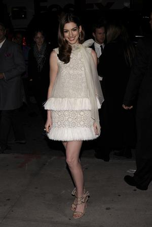 Anne Hathaway Love & Other Drugs screening at the DGA Theater in New York City on November 16, 2010