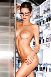Playboy Cybergirl Emily Agnes cooling off in the refrigerator