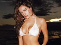 Kelly Brook in a bikini