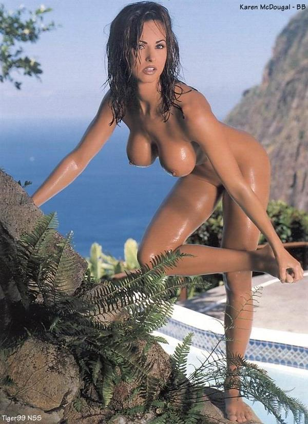 Karen McDougal - breasts