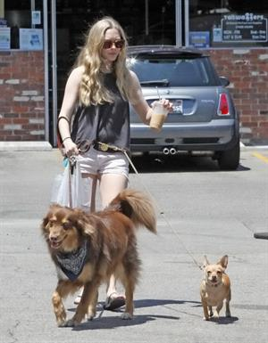 Amanda Seyfried at The Oaks Gourmet Market in Los Angeles on July 17, 2012