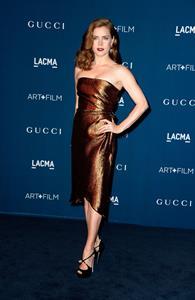 Amy Adams 2013 LACMA Art Film Gala in LA,November 2, 2013