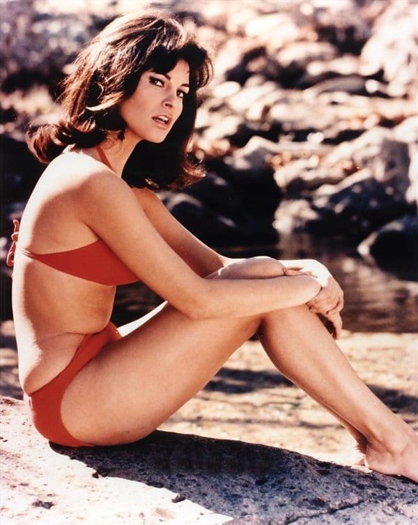 Raquel Welch in a bikini